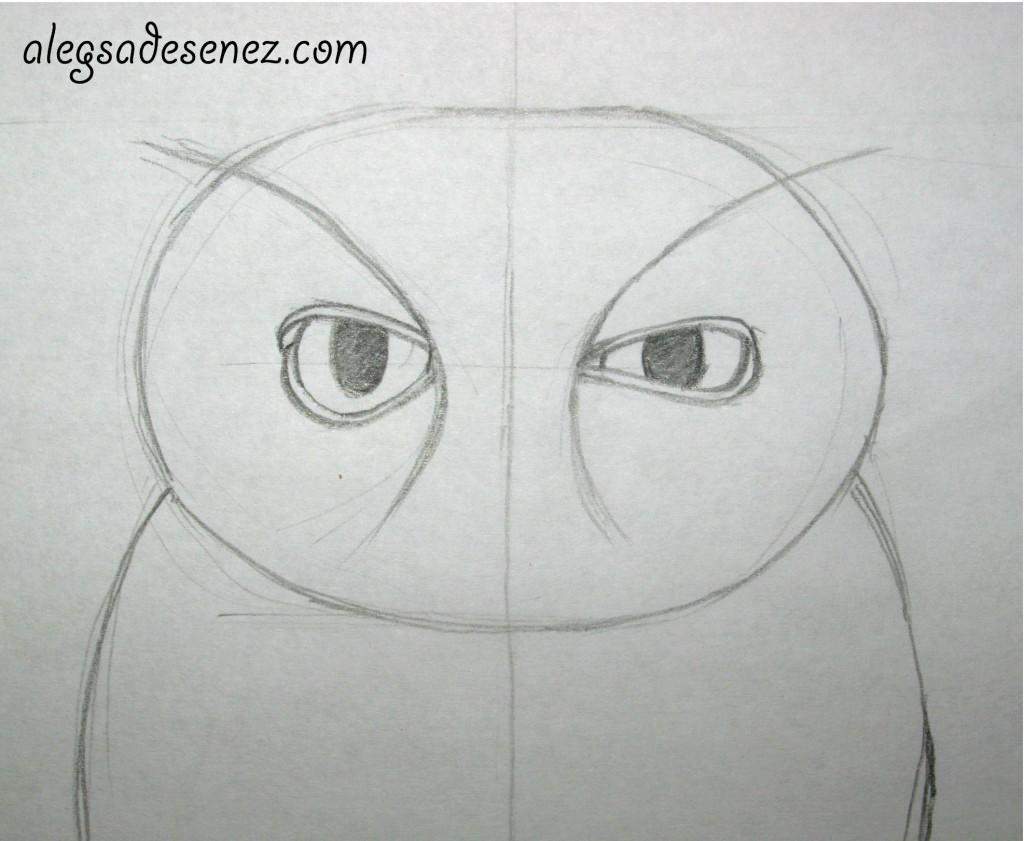schita ochii bufnita 2