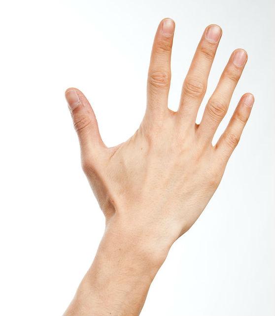 Hand_010_by_ISOStock