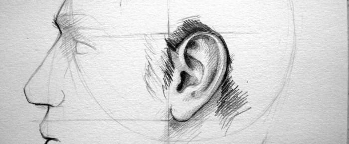 Urechea – parte a chipului uman