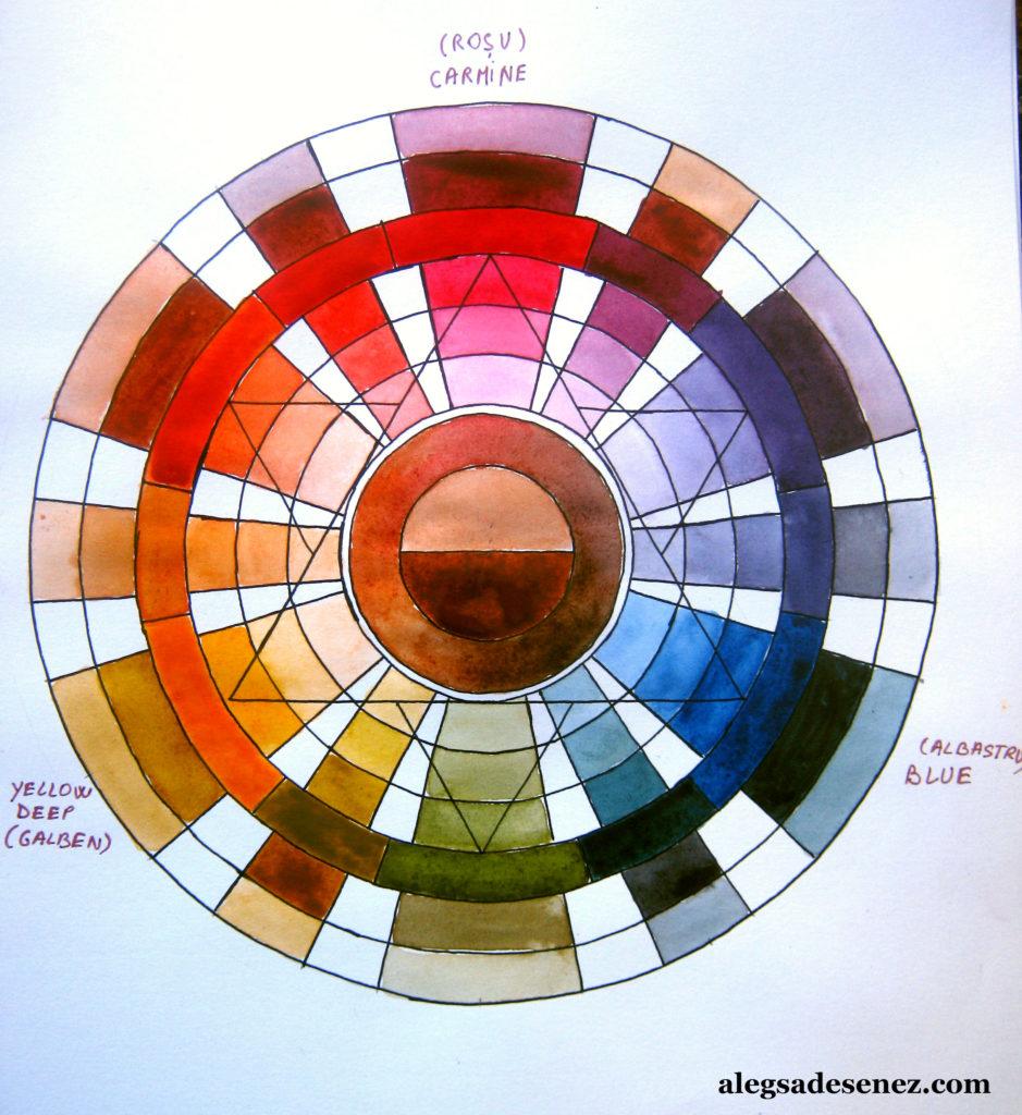 roata culorilor 7